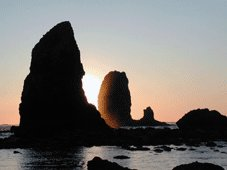 Pacific Coast Tours - Astoria, OR > Pacific Coast > Florence, OR