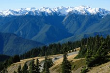 Pacific Coast Tours - Port Angeles, WA > Olympic Nat'l Park > Astoria, OR