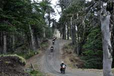 Route 40 Bike Tour - Villa Pehuenia  > San Martin de Los Andes