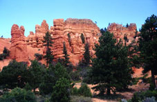 Indian Tours - Mount Carmel, UT > Bryce Canyon > Scenic Drive 12 > Torrey, UT
