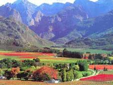 Route 62 Bike Tour - Stellenbosch > La Route des Vins > Worcester