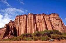 Route 40 Tours - Villa Union > Talampaya > Ischigualasto > San Augustin